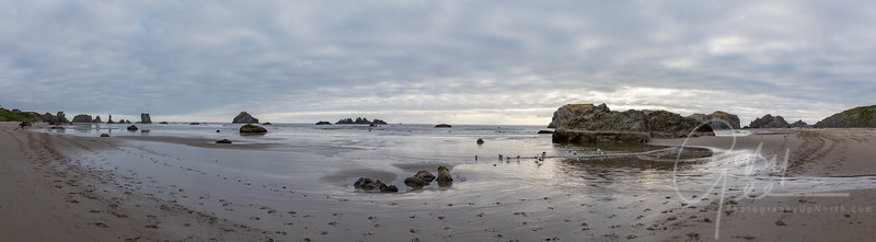 Bandon, Oregon - Stitch of 6 Photographs from the Beach