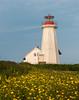 Ile Aux Perroquets Lighthouse