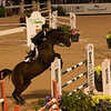 Tryon Resort Grand Prix Equestrian Event