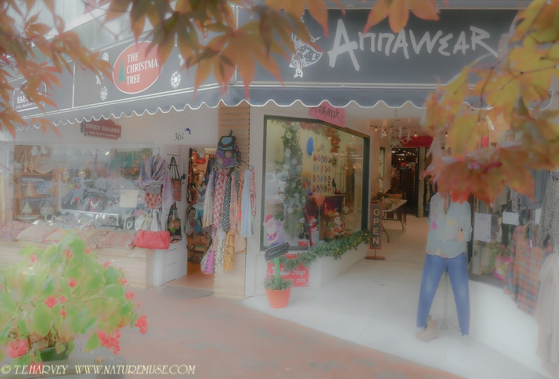 Shopping at Highlands NC