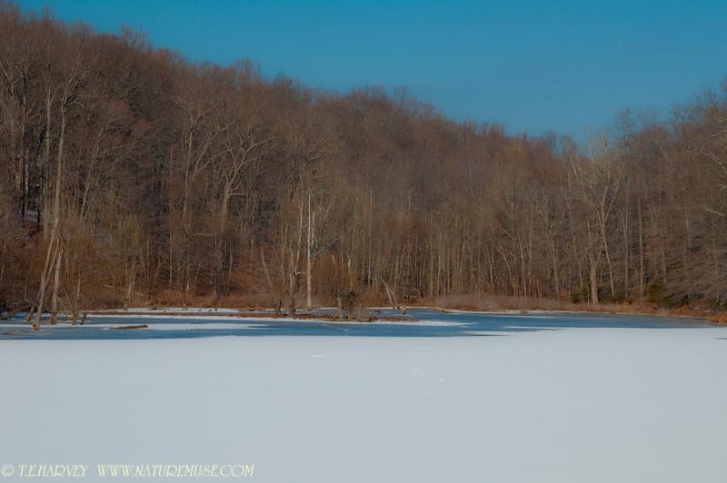 Ice Cove--Clifton Va