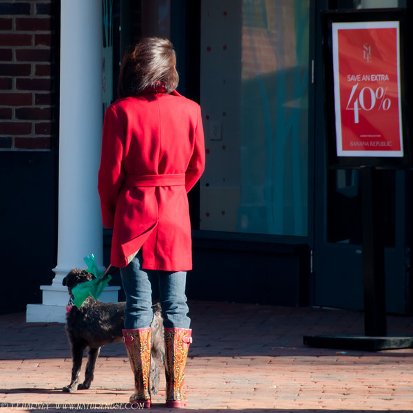 Two window shoppers.  Caught these two on a sunny, but cold winter afternoon in Olde Town Alexandria, Va.