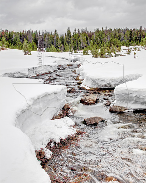 Creek and Snow,<br /> Beartooth Pass,<br /> Near Yellowstone National Park, Wyoming<br /> Wyoming, USA