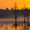Sunrise at Orlando Wetlands. This was taken with  a 500mm, only because i did not bring my wide angle.