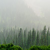 Hazy forests during a smoky summer in British Columbia.