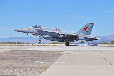 F-18E-USN-VF-131 003 A Boeing F-18E Super Hornet jet fighter USN 168909 VF-131 WILDCATS CAG USS Dwight Eisenhower AC code landing at NAS Fallon 7-2019, military airplane picture by Peter J  Mancus     851_0133     Dwt