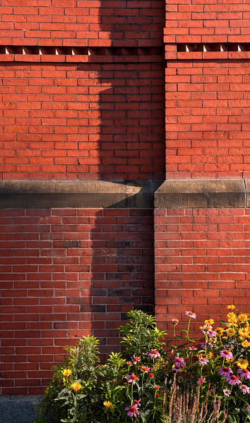 Bricks in Shadow