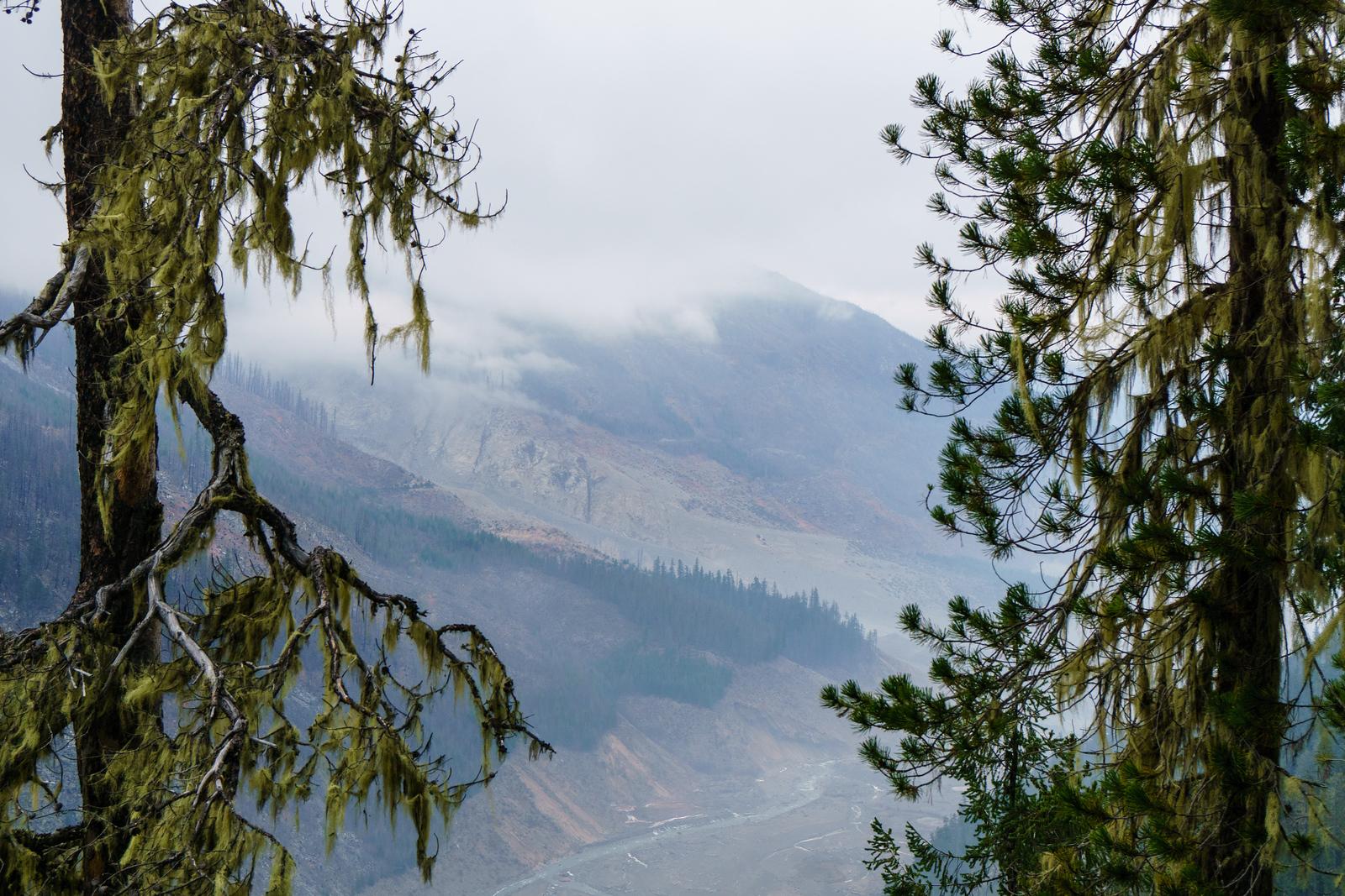 Framed Landslide