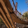 Henry David Thoreau Foot Bridge