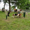 Staff photo by Cathy Spaulding<br /> Jake Ramsey's basset hound, Ranger, tries to clear a pole at the Coody Creek Bark Park.