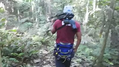 Hiking through the Forest