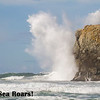 The Sea Roars