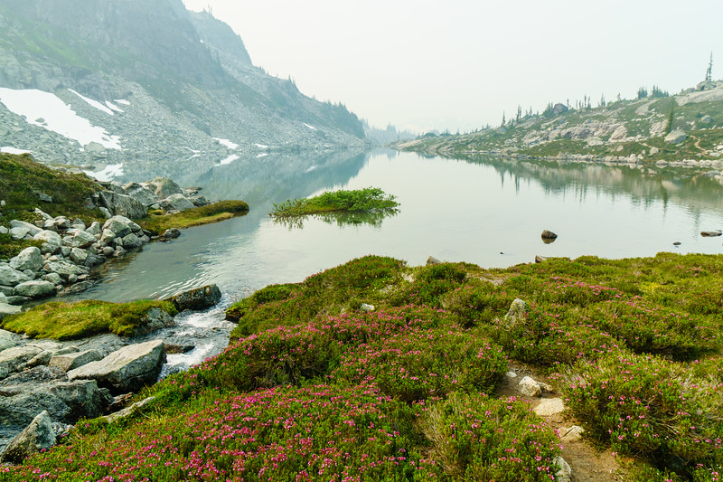 A smoky haze and wildflowers surrounding the aptly named Arrowhead Lake near Pemberton, British Columbia.