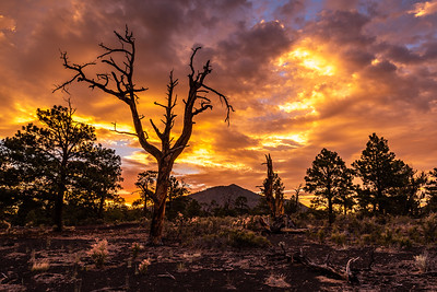 Sunset at Sunset Crater Volcano National Monument, Flagstaff, AZ
