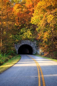 Tunnel Through Autumn