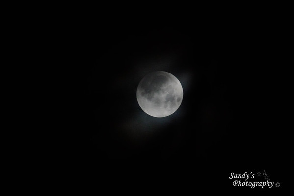 Taken at 5:45 am before the eclipse started.  This was taken between tree limbs while there was still some light clouds in the area.