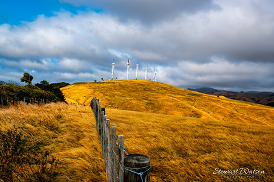Group of wind turbines on the dry fields en route to the Tora Coast (Wairarapa)
