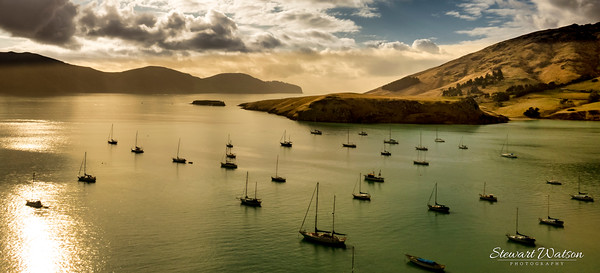 Yachts moored in the bays of Banks Peninsula