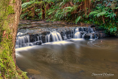 There are several awesome large waterfalls in the Catlins but this is just one of the many smaller ones walking through the forest to the main attractions