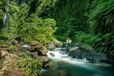 Fast flowing rapids in the river in the tropical lush jungle