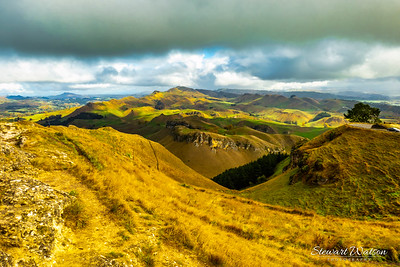 Views of surrounding rural farming country from the top of the Te Mata peak