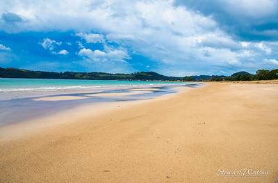 Lonely Bay, Cooks beach 01