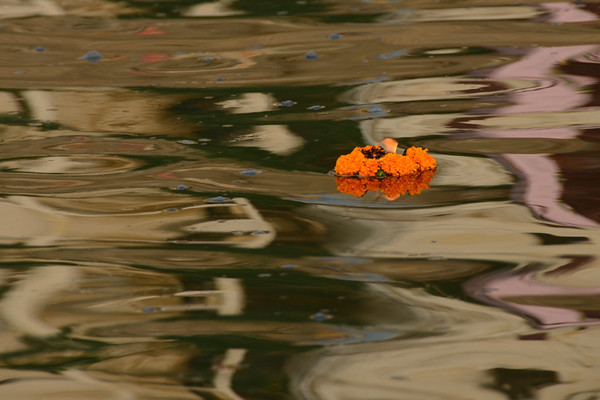 Flower and Candle Ceremony - Varanasi, India
