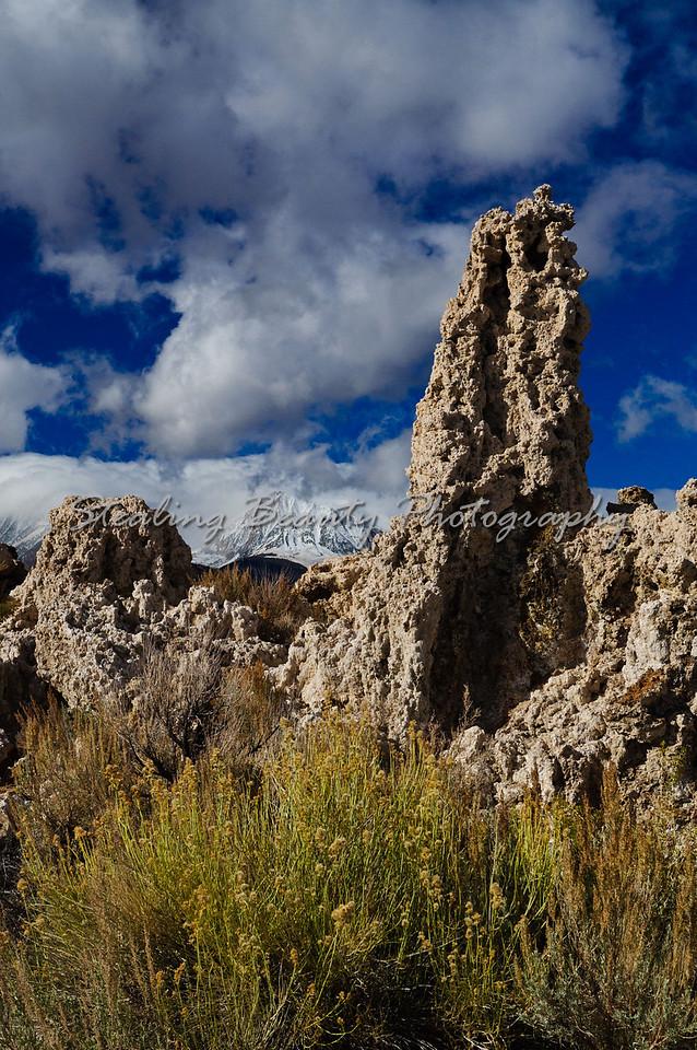 Tuftas toward the Sierra