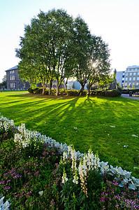 Reykjavik gardens
