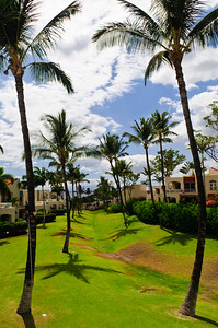Outrigger Palms at Wailea