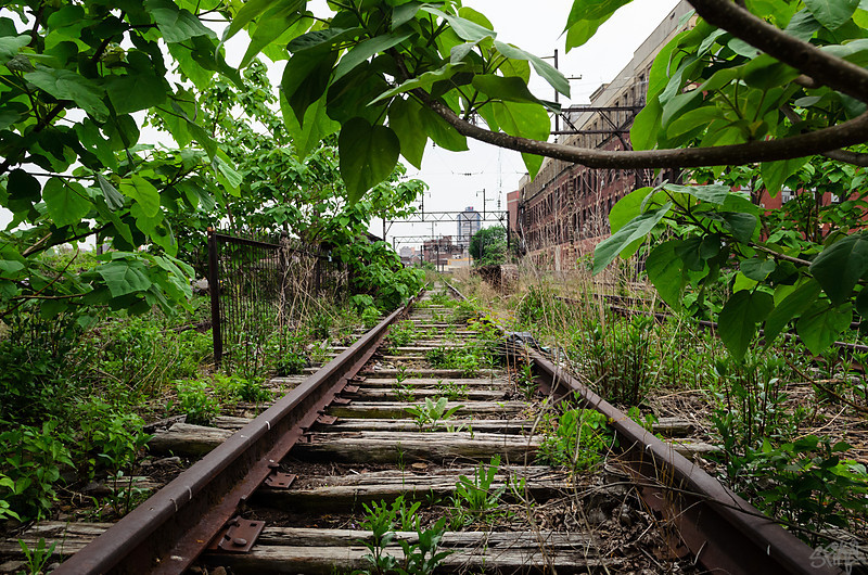 Abandoned Railway Viaduct