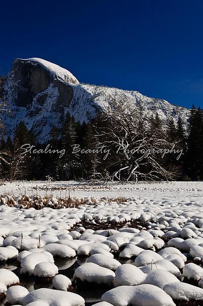 20101231_YosemiteNYE2010_94