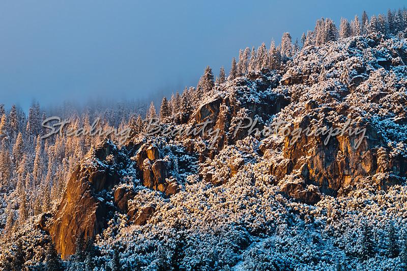 20101230_YosemiteNYE2010_34