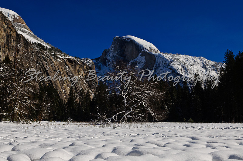 20101231_YosemiteNYE2010_73