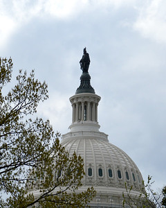 """Statue of Freedom"", United States Capitol Dome, Washington, DC"