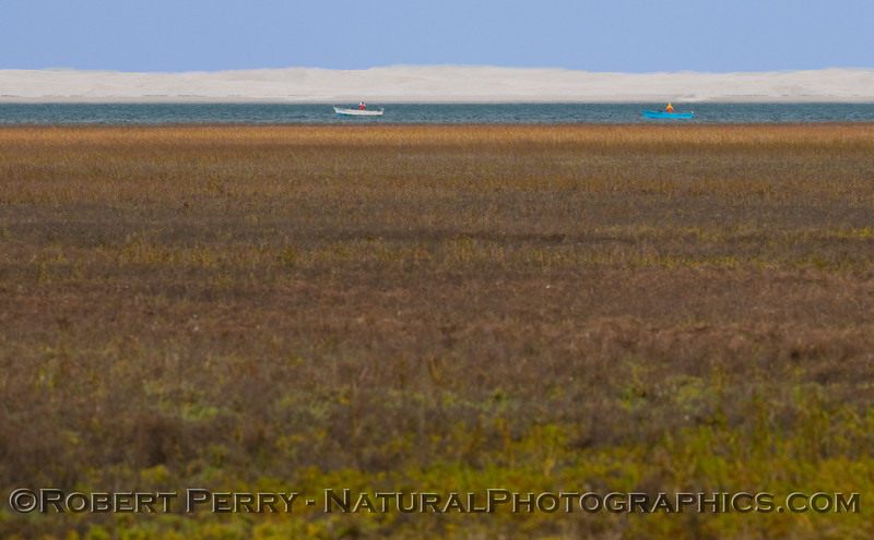 Panga fishermen across the marshland - Scammons.