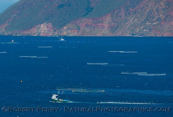 Tuna farming pens and support boats - along Hwy 1 north of Ensenada.