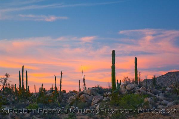 Early sunset - Catavina, Baja California.