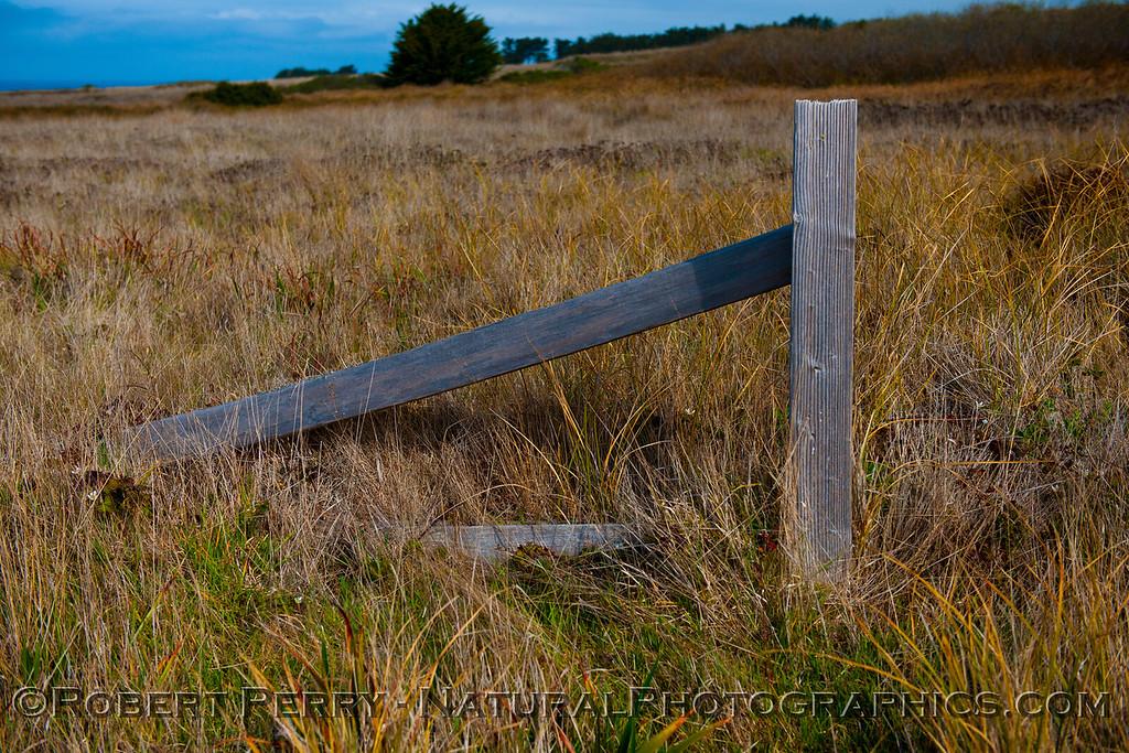 Fence near Pt. Cabrillo lighthouse.