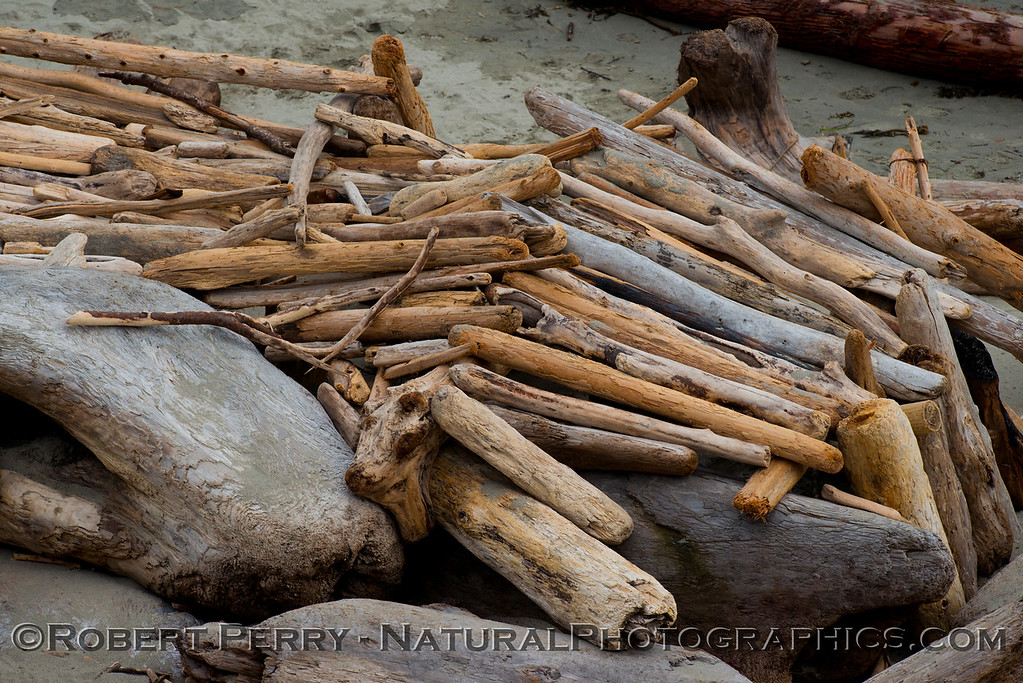 Driftwood - Mendocino.