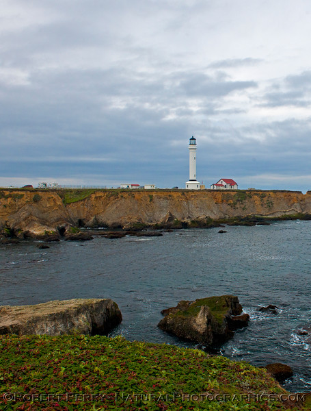 Point Arena lighthouse.