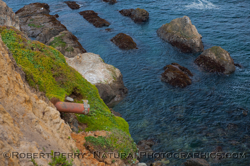 Sea cliff with pipe - near Point Arena.