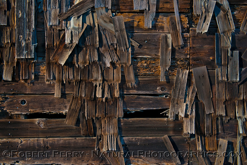 old barn -  detail 2015 11-04 Mendocino-043