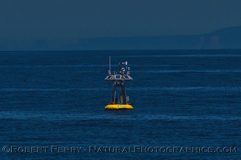 Buoy oceanographic M-1 MBARI 2016 04-19 Monterey Bay-007