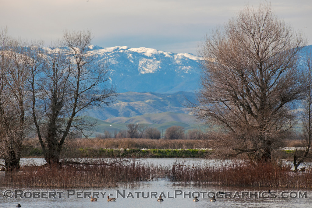 Wetlands and Snow Mountain.