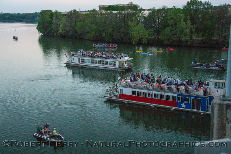 Boats line up to see the Mexican free-tailed bats depart Congress Bridge.