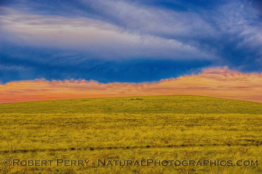 Abstract - clouds over the grasslands
