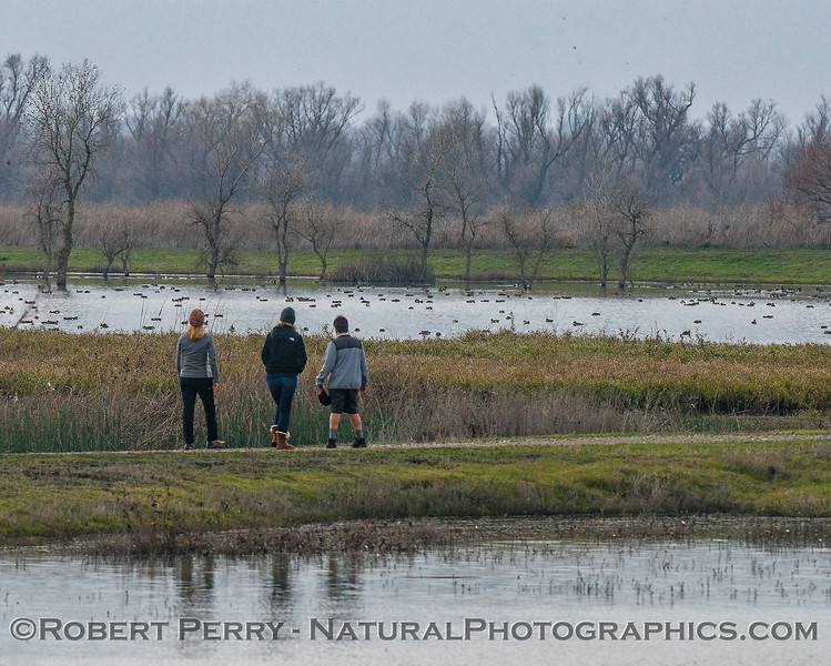 Hikers:  Sue, Amy and Alex in the wetlands.