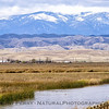 Snow Mountain - Mendocino Forest - view from the Sacramento National Wildlife Sanctuary wetlands