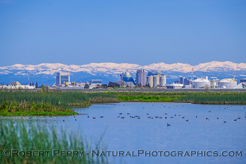 Yolo by-pass estuary, city of Sacramento and snow on the Sierra.
